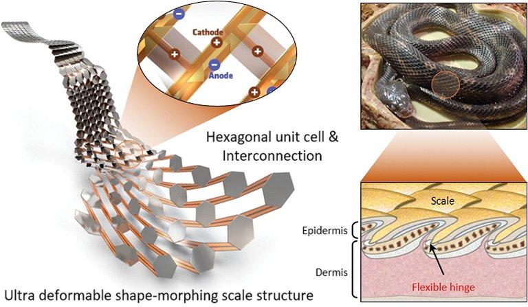 Bateria flexível e extensível move-se imitando escamas de cobra